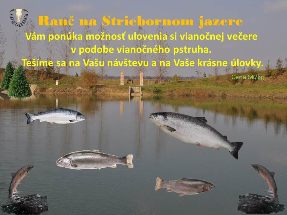 ryby-prezentacia