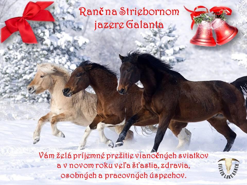 vianocny-pozdrav-2014